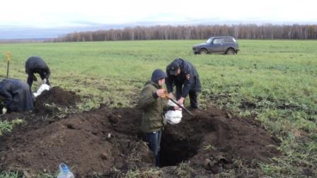 Поисковики установили имя курянина, останки которого нашли в Поныровском районе